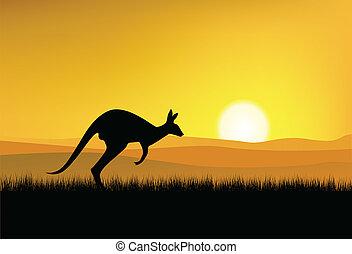 Kangaroo silhouette with sunset background