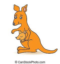 kangourou bébé, mignon