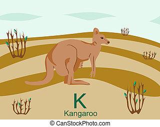 kangourou, k, alphabet, animal