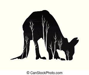 kangourou, silhouette, forêt, pin