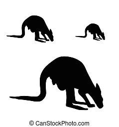 kangourou, vecteur, silhouette