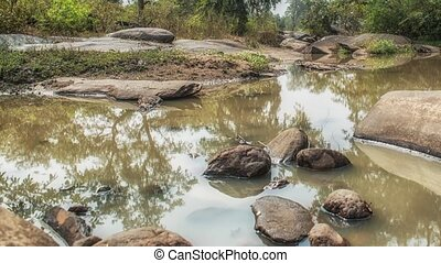 Kanha National Park, India. Landscape with a river and ...