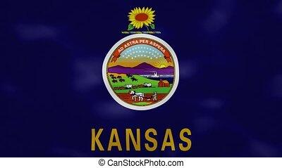 Kansas US dense flag fabric wavers, perfect loop for background
