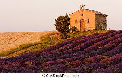 kapelle, mit, lavendel, und, korn, felder, bergplateau, de, valensole, provence, frankreich