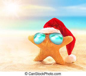 kapelusz, sunglasses, święty, rozgwiazda