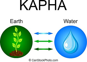 Kapha dosha - ayurvedic human body constitution. Combination of earth and water elements. Vector illustration.
