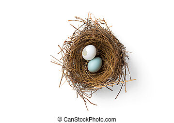 kapot, nest, eitjes, vogel