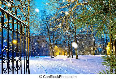 kapubejárat, liget, tél, hóesés, éjszaka