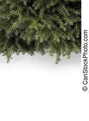 karácsony, háttér, tree;
