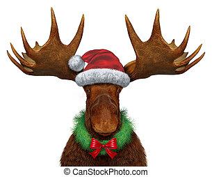 karácsony, jávorszarvas