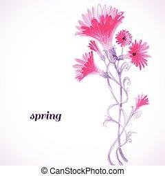 karafiát, pramen, barva vodová, grafické pozadí, malba, květiny