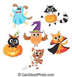 karakters, geklede, halloween, kostuums, dier