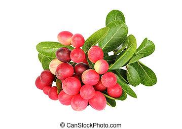Karanda fruit on white background