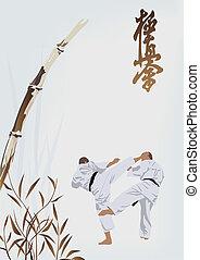 karate, beroepen