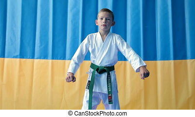 A young boy doing karate moves.