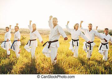 karate, classe, risolvere, il, stare in piedi,...