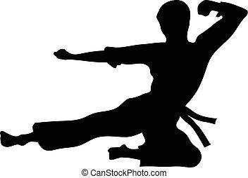 karate, deporte, vector