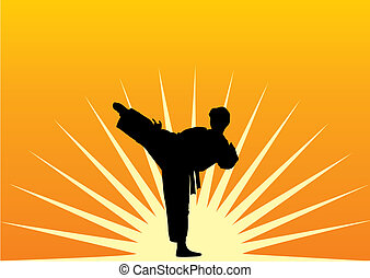 karate - A man practices in karate on a sun background