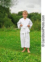 karate, fiú, van, képben látható, pázsit