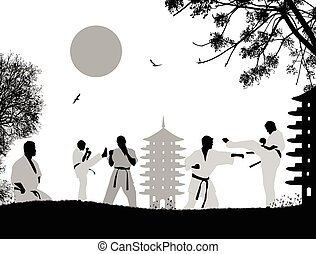 Karate fighters silhouette on white