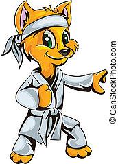 karate, gatito