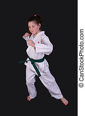 Karate Girl - Young girl strikes a Karate pose.