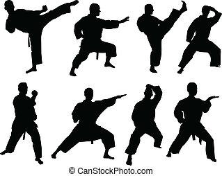 karate, gyűjtés, -, vektor