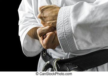 Karate hands - Closeup of male karate fighter hands.