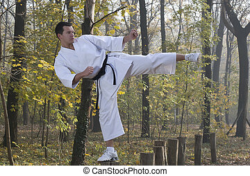 Karate in forestry