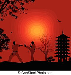 Karate in the beautiful landscape