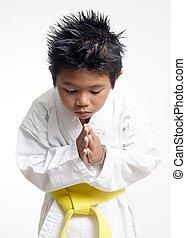 karate, jongen, stokvoering