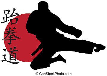 Karate jump - Black silhouette of karate man prepared for...