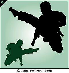 karate, kämpfer, sammlung