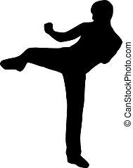 Karate kick fighting