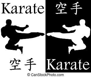 karate kick in the jump