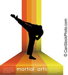 Karate kick  - Karate kick. Vector