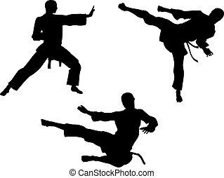 karate, krijgshaftige kunst, silhouettes