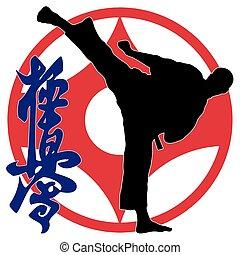 karate kyokushinkai fighter high kick. Kanku kanji