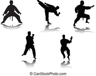 karate, luchadores, vector, -