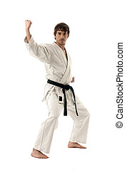 Karate male fighter young isolated on white background