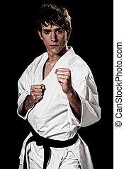 karate, mannelijke , vechter, jonge, hoog contrast, op,...