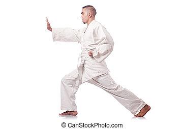 Karate martial arts fighter