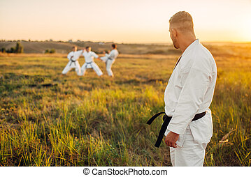 Karate master looks at the training of his class