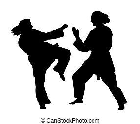 karate, mujeres, pelea
