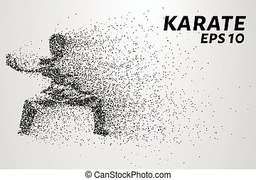 Karate of particles. Karate consists of small circles. Vector illustration