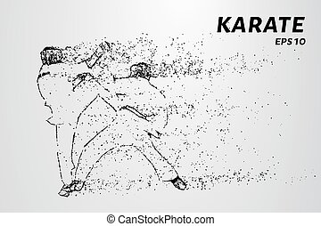 Karate of particles. Karate consists of small circles