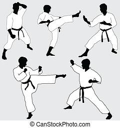 karate, póz