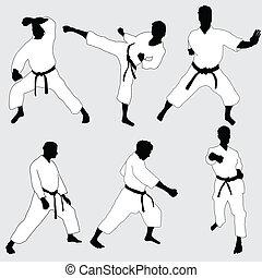 karate, pose