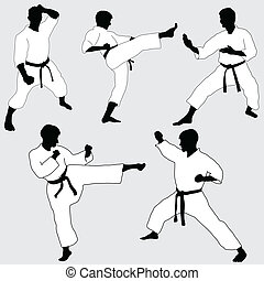 karate, positur