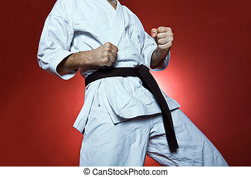 karate, praktijk